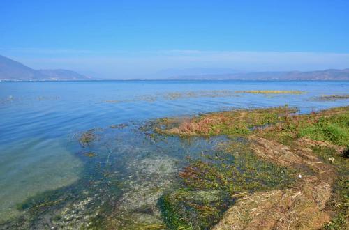 14-大理-洱海-海舌公园