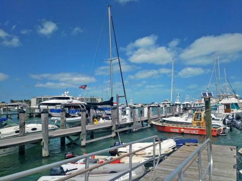 04-西礁岛码头