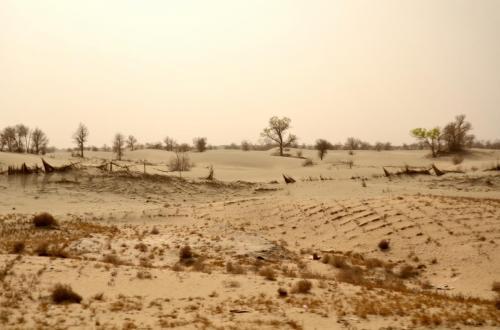7-塔克拉玛干沙漠